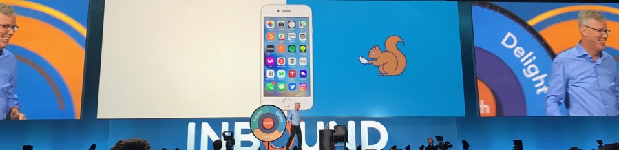 Squirrel  | inbound18